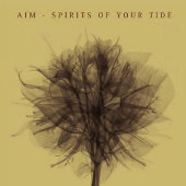 Aim - Spirit Of Your Tide